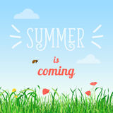 Vector illustration poster of summer is coming words in the field with flowers and a bee flying. Vector illustration of summer is coming words in the field with Stock Photo