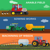 Vector illustration of the process seeding, growing and care. Stock Photos