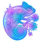 Vector illustration of rainbow chameleon and decorative patterns Stock Photography