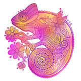 Vector illustration of rainbow chameleon and decorative patterns Royalty Free Stock Photography
