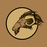 Vector illustration of a ram head Royalty Free Stock Images