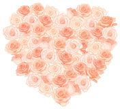 Vector illustration of realistic, detailed heart bouquet in peach color on white background. Stock Image