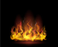 Vector flame. Vector illustration of realistic flame on a black background Royalty Free Stock Photo