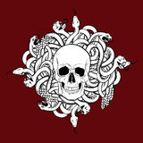 Vector illustration of realistic human skull with  bunch of snakes Royalty Free Stock Photos