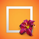 Vector illustration of realistic lily flower Royalty Free Stock Photos