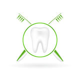 Vector illustration of realistic tooth with toothb Royalty Free Stock Photos