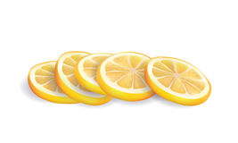 Vector Illustration of Realistic Yellow Fresh Lemon Slices  on White background Royalty Free Stock Image