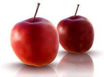Vector illustration of red apples Royalty Free Stock Photos