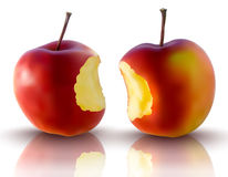 Vector illustration of red apples Stock Image