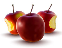 Vector illustration of red apples Royalty Free Stock Image