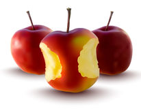 Vector illustration of red apples Stock Photos