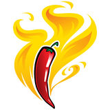 Vector illustration of red hot mexican spicy chilly pepper  Royalty Free Stock Photography