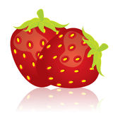 Strawberry. Vector illustration of red strawberry Royalty Free Stock Image