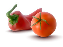 Vector illustration of red tomatoe and red pepper Royalty Free Stock Image