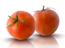 Vector illustration of red tomatoes Stock Photo