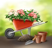 Wheelbarrow with flowers. Vector illustration of red wheelbarrow full of flowers with trowel and pots. Isolated on background Royalty Free Stock Photography