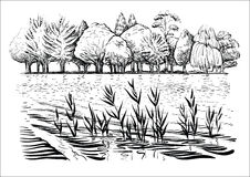 Vector illustration of river landscape with trees, water waves and reflexion. Black and white sketch. Stock Photo
