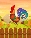 Vector illustration of a rooster Royalty Free Stock Images