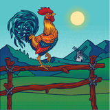 Vector illustration of a rooster Stock Photography