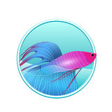 Vector illustration of rooster fish and sea in the circle Stock Photos
