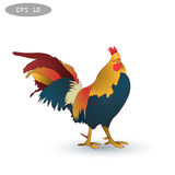 Vector illustration of rooster, symbol 2017 on the Chinese calendar 1v. Vector illustration of rooster, symbol of 2017 on the Chinese calendar. Silhouette of red Stock Images