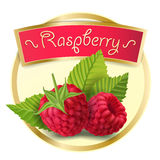 Vector illustration of a round label, a sticker with raspberry berries in a realistic style. royalty free illustration