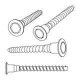 Vector illustration of screws Stock Image
