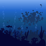 Vector illustration of sea fish on a blue background Royalty Free Stock Image