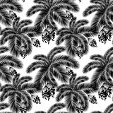 Vector illustration Seamless black and white palm leaves and fru Stock Photos