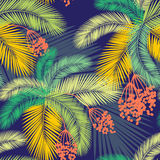 Vector illustration Seamless color palm leaves and fruit pattern Stock Photography