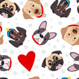 Vector illustration, seamless pattern of funny head of purebred dogs Royalty Free Stock Image