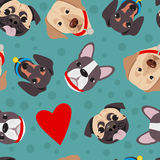 Vector illustration, seamless pattern of funny head of purebred dogs. Stock Photos