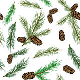 Vector illustration seamless pattern with pinecone branch . Pine cone wood nature Royalty Free Stock Image