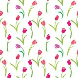 Vector seamless color pattern of tulips. Vector illustration seamless pattern tulips Royalty Free Stock Photography