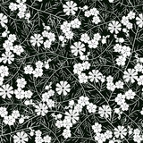 Vector illustration of seamless white and black flower pattern Stock Images