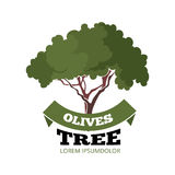 Vector illustration set of black Olives with leafs Stock Images