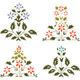 Vector illustration set blooming plant with flowers and leaf Royalty Free Stock Image