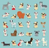 Cute and funny cartoon breeds of dog Stock Images