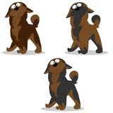 Vector illustration set of dog characters surprised gray brown c royalty free illustration