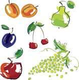 Vector illustration - set of fruits Royalty Free Stock Photography