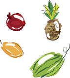 Vector illustration - set of fruits Royalty Free Stock Image