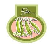 Vector illustration set of green peas Stock Photos