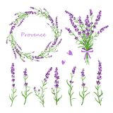 Vector illustration set of lavender flowers, bouquet, wreath and elements of design for greeting card on white. Background in retro flat style, provence concept vector illustration