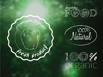 Vector illustration set of organic food logos on a blur forest backdrop.  Royalty Free Stock Photography