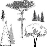 Vector illustration set of trees Stock Photo