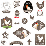 Vector Illustration. Set of Vector Labels: Free Range Chicken