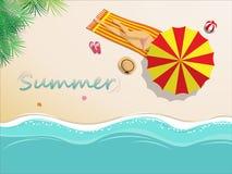 Vector illustration. girl in bikini sunbathing on the beach vector illustration