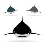 Vector illustration of shark Stock Photo