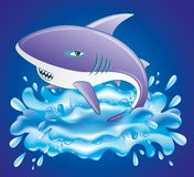 Vector illustration. Shark. Vector illustration. Cartoon shark on blue background Stock Image
