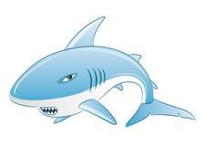 Vector illustration. Shark. Stock Images